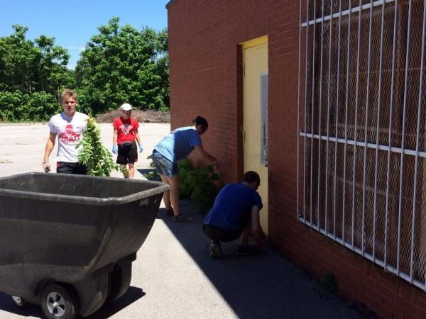 Youth Work Volunteers